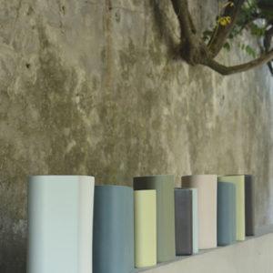 New Vases Fenouil